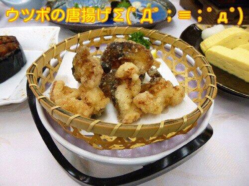Sept_28_2012_801.jpg