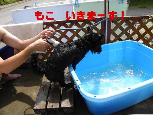 DSCN1692_convert_20110912193801 ブログ用