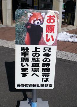 レッサーパンダの看板(26.1.11)