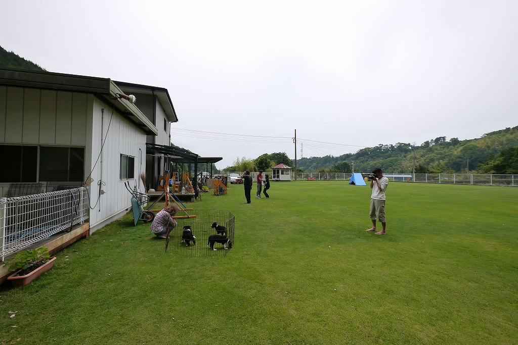 s-20120602 344