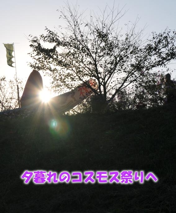 DSC_5121.jpg