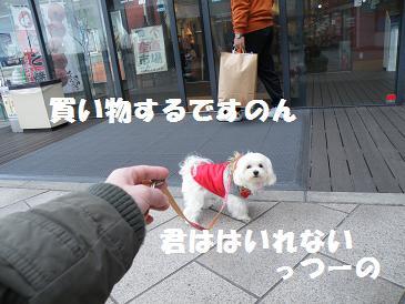 2010_04150016.jpg