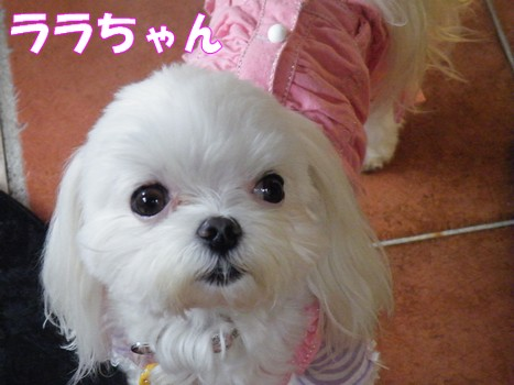 2010_050702.jpg