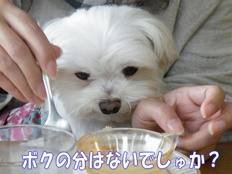 2010_050705.jpg
