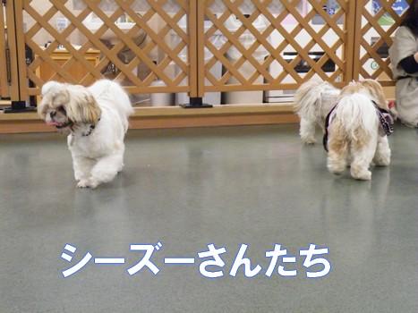 2010_051206.jpg