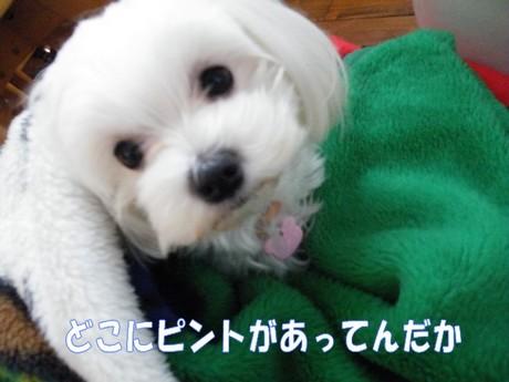 2010_051502.jpg