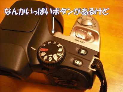 2010_051509.jpg
