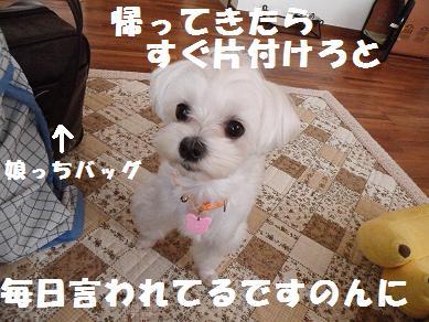2010_051704.jpg