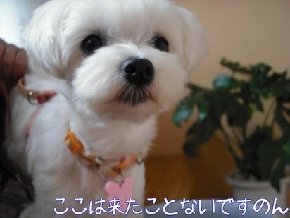 2010_051801.jpg