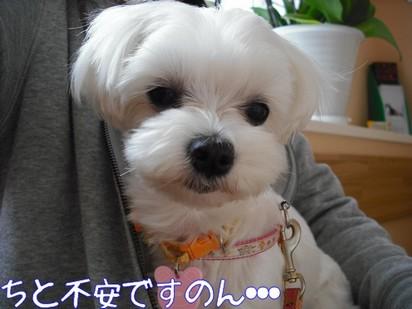2010_051803.jpg