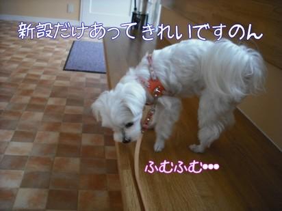 2010_051804.jpg