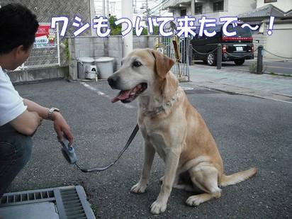 2010_052002.jpg