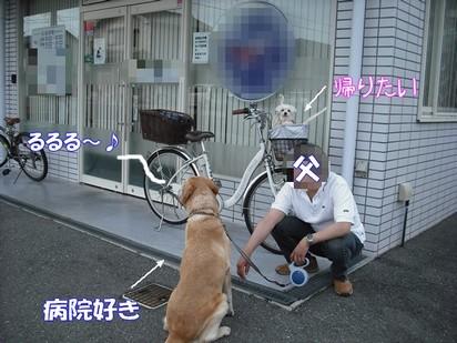 2010_052004.jpg