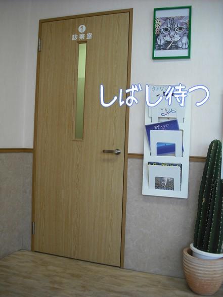 2010_052005.jpg