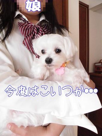 2010_060706.jpg