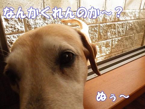 2010_061102.jpg