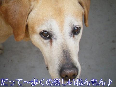 2010_061103.jpg