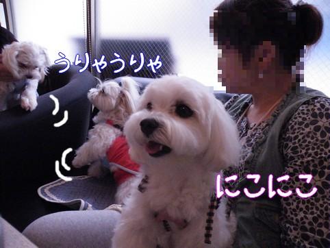 2010_062907.jpg