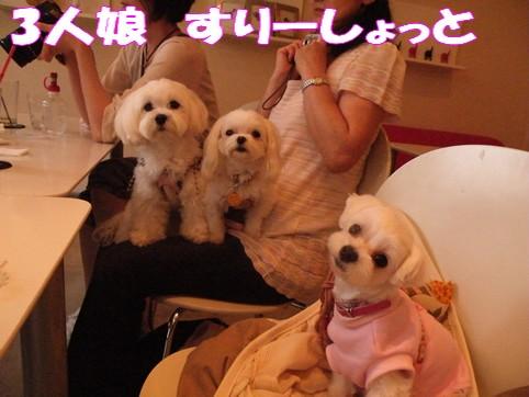 2010_062918.jpg