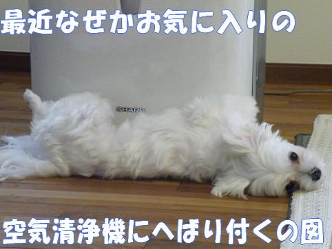 2010_083105.jpg
