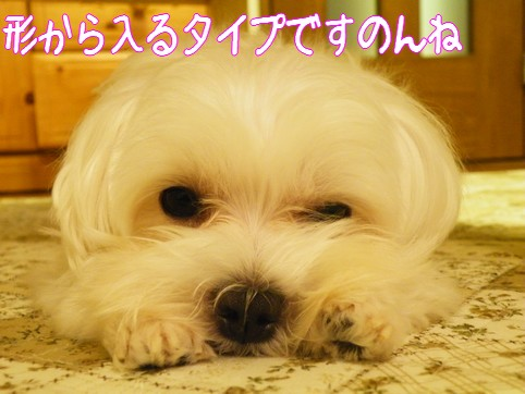 2010_090404.jpg