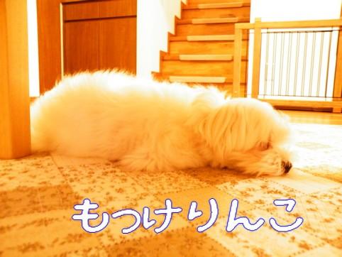 2010_090601.jpg