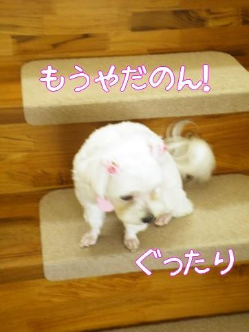 2010_090606.jpg