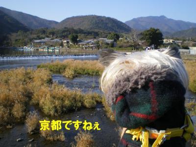 京都観光ですねぇ