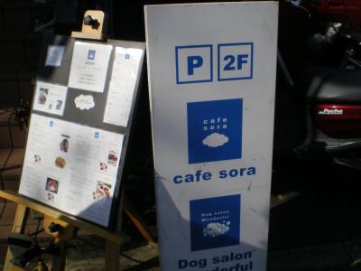 cafe sora 1