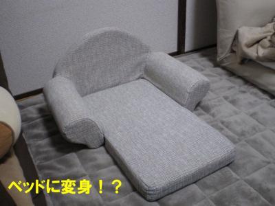 ソファーベッド!?