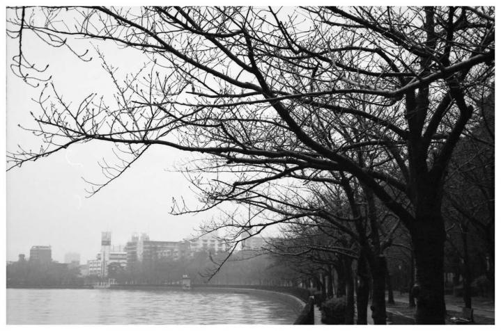川崎橋を越えて 大川左岸 1
