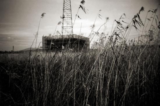 葦の原と鉄塔