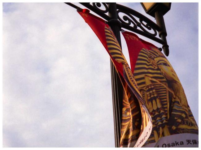 はためく旗ー650-550
