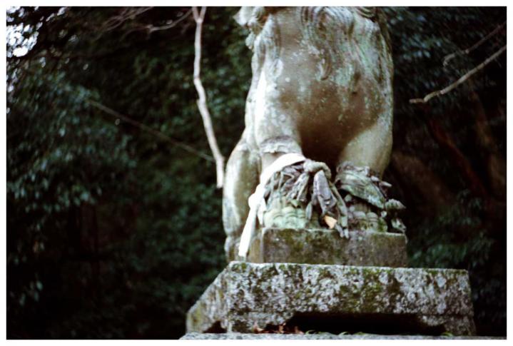 高良神社前の狛犬