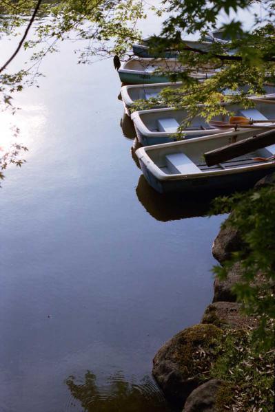 浮見堂ボート
