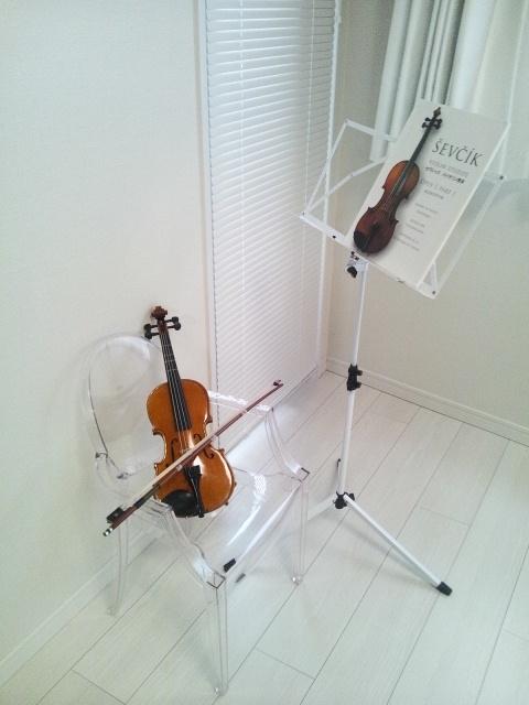 20110209white_violine.jpg
