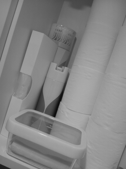 20120529storage_washroom.jpg