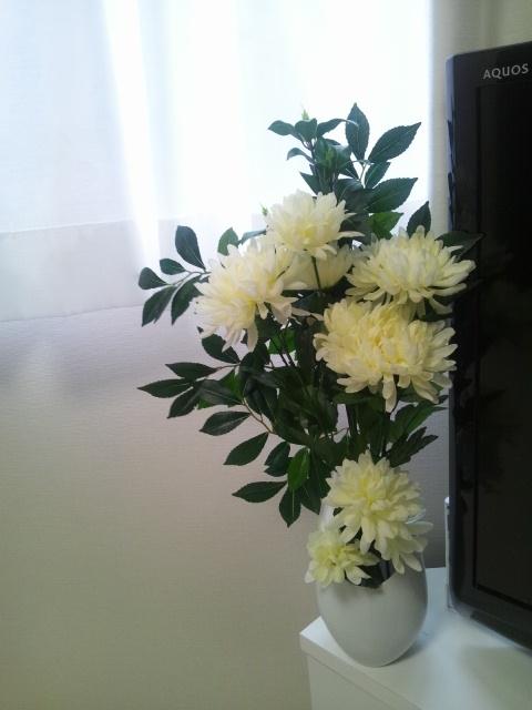 20120815flower2.jpg
