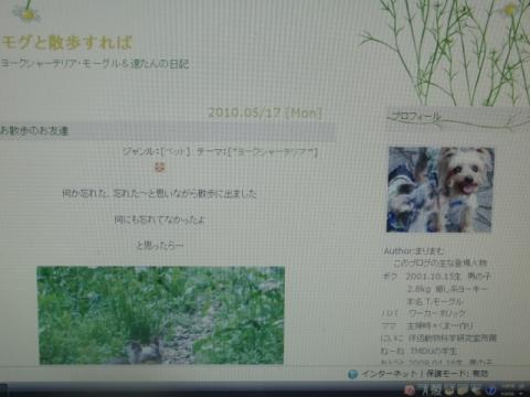 CIMG8918.jpg