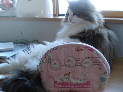 猫にポーチ(笑)