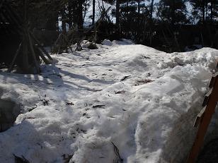 雪いっぱいだ~