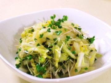 120403ノンオイル☆フレッシュ白菜とスプラウトのショウガサラダ