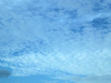120815うろこ雲