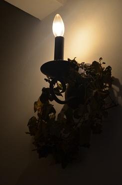 照明とリース