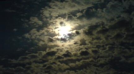 日食撮れず