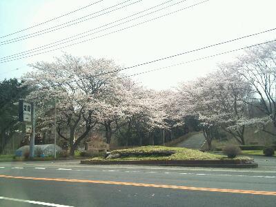 紫塚2012