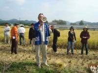 2011稲刈り 003