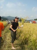 2011稲刈り 015