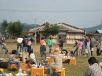 2011稲刈り 031