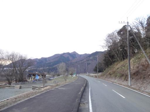 Dsc00600_1.jpg